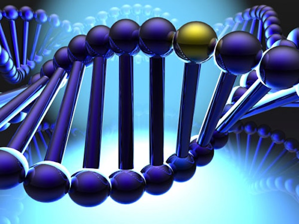 Scoliosis Gene Discovered